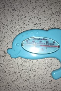 Campol vandens termometras