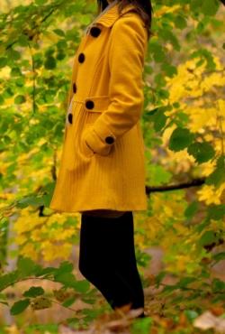 Ryškus rudeninis paltukas